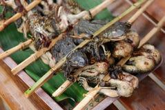 De kikker van de barbecue Stock Afbeelding