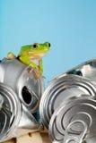 De kikker van de ecologie stock foto