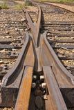 De Kikker van de spoorweg Stock Foto