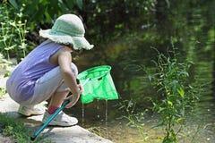 De kikker van de visserij Stock Fotografie
