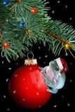 De kikker van Kerstmis stock afbeeldingen
