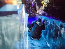 De kinderen dalen ijsdia in Ijspaleis, de Wintersprookjesland, Londen Stock Foto's