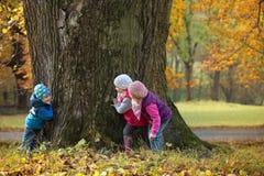 De kinderen die huid spelen - en - zoeken royalty-vrije stock foto