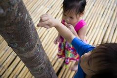 De kinderen die voedend een stuk van voedsel aan mier, het mooie jonge geitje die van Azi? een voedsel houden en proberen om wat  royalty-vrije stock foto