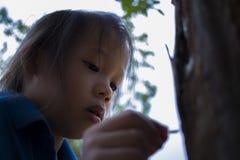 De kinderen die voedend een stuk van voedsel aan mier, het mooie jonge geitje die van Azi? een voedsel houden en proberen om wat  stock afbeelding