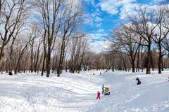 De kinderen die in de winter spelen parkeren op een zonnige dag stock afbeelding