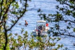 De kinderen duiken in het zeewater van de motorboot door de kust van de Zwarte Zee van Cuacasus-Bergen Stock Foto's
