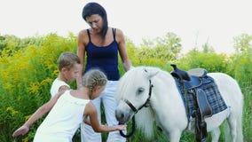 De kinderen, een jongen en een meisje van zeven jaar, voedden een witte poney, geven om wortelen te eten Vrolijke, gelukkige fami stock footage
