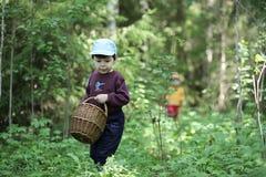 De kinderen gaan naar het bos voor paddestoelen royalty-vrije stock afbeeldingen