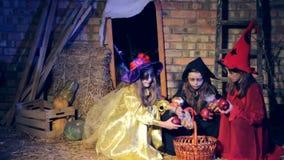De kinderen in Halloween-kostuums zijn weg doen schrikken van brijen en looppas stock footage