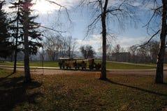De kinderen leiden drijftrog op het park stock foto's