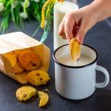 De kinderen` s hand dompelt een koekje in een Kop van melk onder Royalty-vrije Stock Afbeeldingen