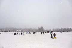 De kinderen schaatsen bij toboggan in de winter in werking die wordt gesteld die Stock Fotografie
