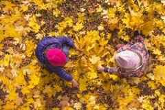 De kinderen spelen met de herfstgebladerte Stock Foto's