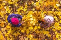 De kinderen spelen met de herfstgebladerte Royalty-vrije Stock Afbeelding