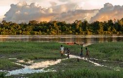 De kinderen spelen op de rivierbank Stock Foto's