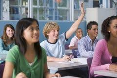 De kinderen van de school in middelbare schoolklasse