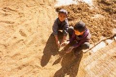 De kinderen van het Nepalilandbouwbedrijf stock foto's