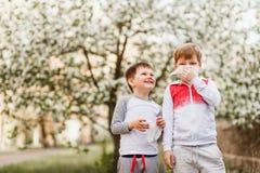 De kinderen vegen hun neus met servetten op de achtergrond van bloeiende Apple-bomen af royalty-vrije stock foto