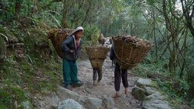 De kinderen werken als portiers in Nepal stock footage