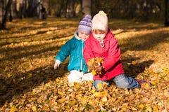 De kinderen werpen de herfstbladeren 4 Royalty-vrije Stock Afbeeldingen