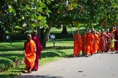 De kinderenmonniken van het boeddhisme in een park royalty-vrije stock afbeeldingen