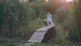 De kinderenrecreatie, de leuke jongen van jonge geitjesvrienden en het meisjesspel lopen en lopen binnen op houten brug onder gro stock videobeelden