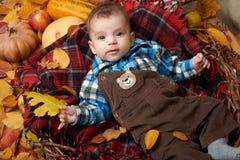De kindjongen ligt op geruit Schots wollen stofplaid met gele de herfstbladeren, appelen, pompoen en decoratie, dalingsseizoen Stock Afbeeldingen