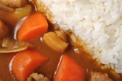 De kip van de kerrie met rijst stock foto