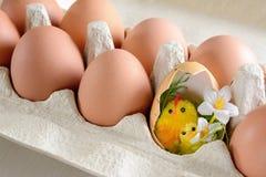 De kip van eieren Stock Afbeeldingen