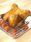 De kip van Rosat Stock Foto