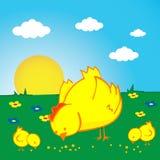 De kippen van de kip en van twho Stock Foto