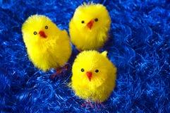 De kippen van Pasen Royalty-vrije Stock Afbeeldingen
