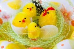 De kippen van Pasen Royalty-vrije Stock Fotografie