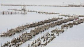 De kippenren voor het voeden van vissen in het oosten van het overzees van Thailand Royalty-vrije Stock Foto's