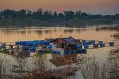 De kippenren voor viskwekerij in rivier van Thailand royalty-vrije stock foto's