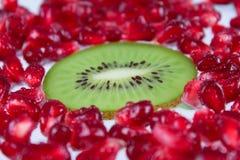 De kiwi van het deelfruit tegen granaatkorrels Royalty-vrije Stock Afbeelding
