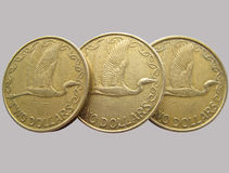 De kiwi van muntstukken Stock Afbeelding