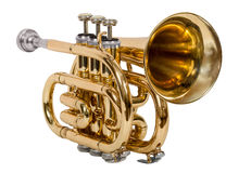 De klassieke kornet van het wind muzikale instrument die op witte achtergrond wordt geïsoleerd Royalty-vrije Stock Foto