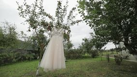 De kleding van de bruid hangt op een appelboom Zeer mooi en elegant Huwelijk stock videobeelden