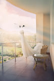 De kleding van het huwelijk vector illustratie
