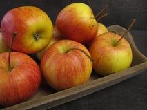De kleine appelen van Tenroy Gala Royal Royalty-vrije Stock Fotografie