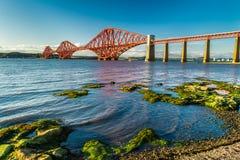 De kleine baai dichtbij Firth van vooruit overbrugt in Schotland stock fotografie
