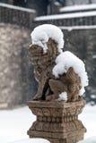 Chinese leeuw in de winter Stock Afbeelding