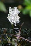 De kleine Fontein van de Tuin stock afbeeldingen