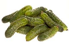 De kleine geïsoleerdee komkommers van de bos Stock Foto's