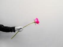 de kleine hand die de roze bloem houden, geeft aan iemand Stock Foto's