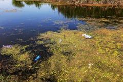 De kleine het sterven rivier werd overwoekerd met moerasinstallaties De verontreiniging van het omringen spreekt overzich, de sne royalty-vrije stock foto