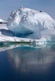 De kleine ijsberg in het water dichtbij de Antarctische eilanden is sittin Stock Foto's