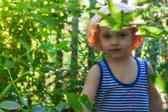 De kleine jongen speelt huid - en - zoekt, is hij verborgen achter een groene struik Stock Fotografie